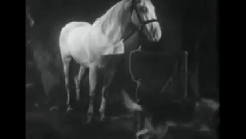 Т С Приключения Рекса и Ринти The Strangers Recall 9 серия 1935г