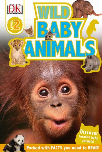 Animal Talk August 2017