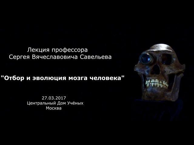 Лекция С В Савельева Отбор и эволюция мозга
