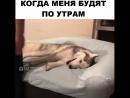 Когда разбудили в субботу утром