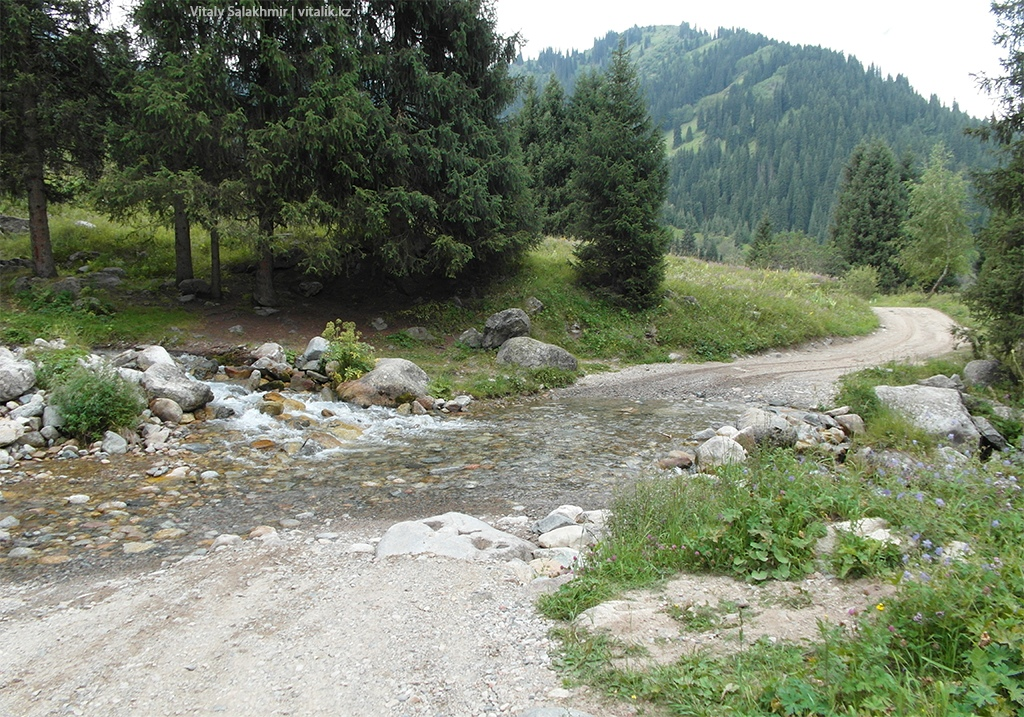 Ручьи по дороге Кок-Жайляу Алма-Арасан