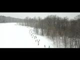 Лыжня России 2018 в Ясной Поляне