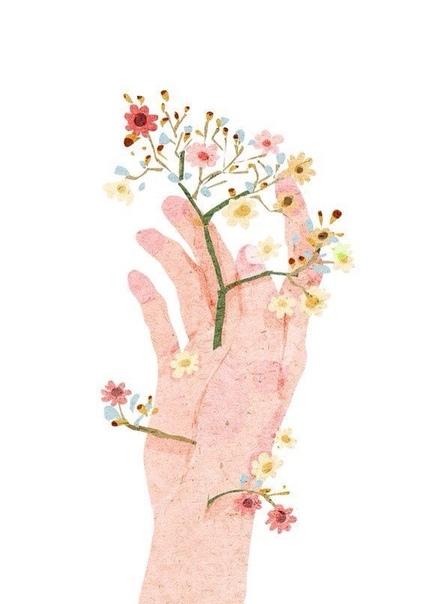 и пусть растут цветы на ваших шрамах.