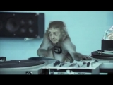 Basement Jaxx - Wheres Your Head At ( Official Video ) Rooty