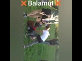 Женский офф Balamut