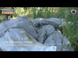 Мегаполис - Свалка биоотходов - Нижневартовск