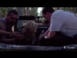 Видео аварии на съемках Убить Билла, которая чуть не стоила Уме Турман жизни