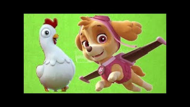Картинки цыплята из мультика щенячий патруль