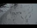 По слдах диких зврв-in the footsteps of wild beasts!!! Hinkik-Outbreaker,Janji- Chasing Storms
