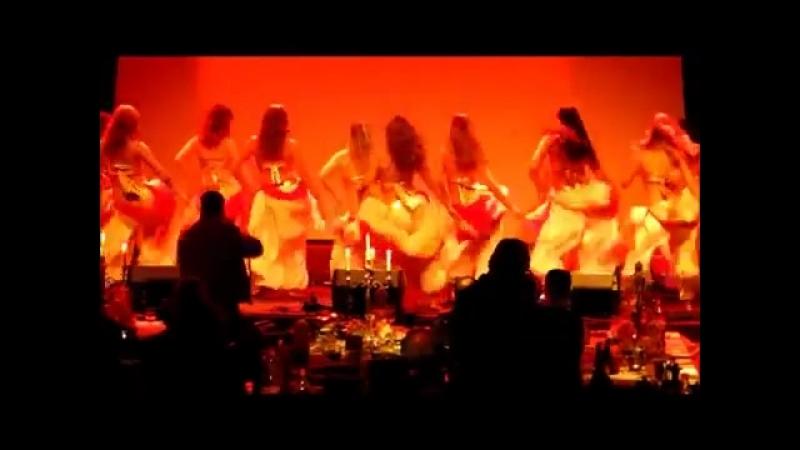 Hanan and Awalim Oriental Dancegroup perfroming at the Opening Gala of Malmo Ara 20880