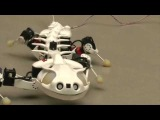 Робот Саламандра. Новинка робототехники. Salamandra robot. Новости робототехники.