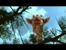 BBC Жизнь млекопитающих 03 Травоядные Познавательный природа 2002