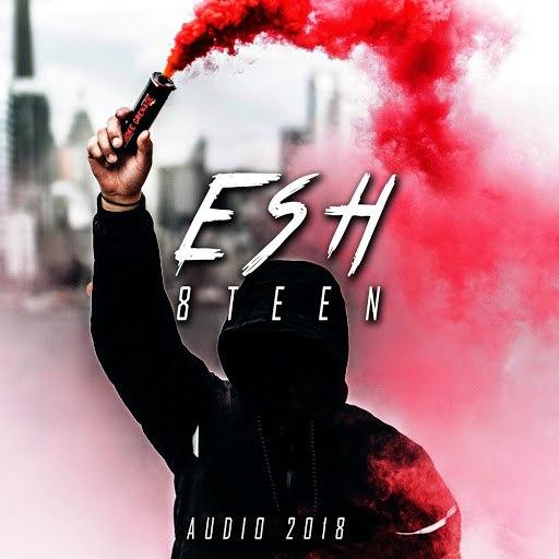 ESH альбом 8Teen