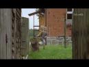 """""""Чужое счастье"""" Польша - Германия, 1997"""