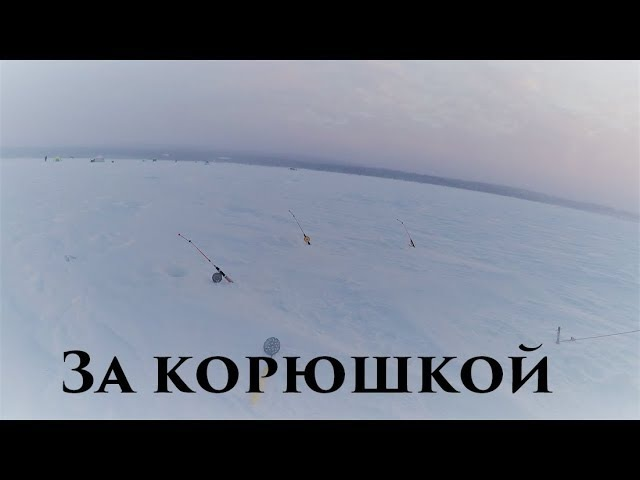 Зимняя рыбалка / За корюшкой / Winter fishing For smelts