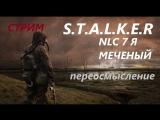 S.T.A.L.K.E.R nlc 7 я меченый переосмысление стрим онлайн #22