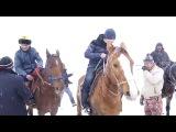 Суусамырдын кок-бору боюнча кубогу. Рустам Тыналиев тренер-капитан болуп командасы менен бирди алды