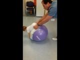 Упражнения для мышц спины и живота
