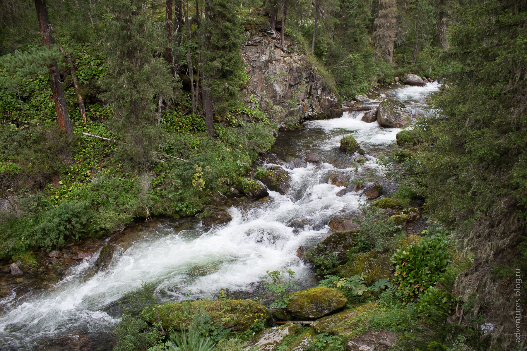 Река Тушканчик