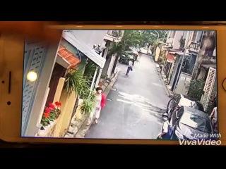 Cảnh trộm chó táo tợn giữa phố Hà Nội khiến dân mạng Việt