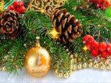 Поздравление с Новым годом. Катя Волкова &amp Misters