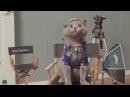 Гений видеомонтажа Прикол с котами