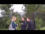 Замученный львёнок в олимпийском парке Сочи
