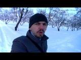 МИНИ ВЛОГ: Снег в Москве / Гуляю в усадьбе / Зимний яблоневый сад 01.02.2018