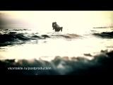 Tiesto feat Rachael Starr - I Love You