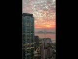 Dubai Marina, 7.02.18