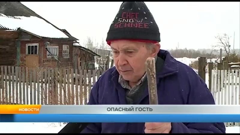 МОШЕННИК ОБОКРАЛ 88-ЛЕТНЕГО ПЕНСИОНЕРА. РЫБИНСК