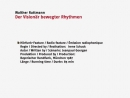 Walther Ruttmann Der Visionar bewegter Rhythmen 86' 1987