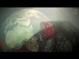 Пластиковые загрязнение представляет собой смертельную угрозу для нашего океана