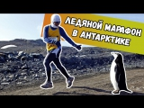 Дима Бикбаев. ХайпNews. Эпизод 61