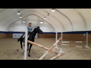 Год я не садилась на лошадь и вот, я снова в седле, это непередаваемые эмоции безудержного счастья😀🙃😄