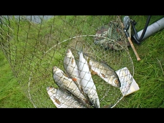 Рыбалочка дождь