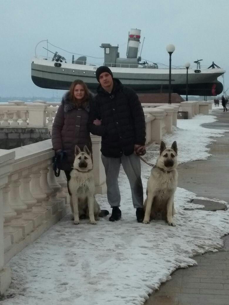 ВОСТОЧНО-ЕВРОПЕЙСКАЯ ОВЧАРКА ВЕОЛАР МЧС АЛЬФА - Страница 2 G0qLOuZc2DI