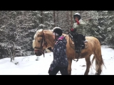 Прогулка по зимнему лесу ❄️