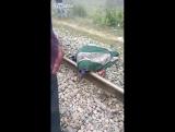 Машинист поезда остановился, потому что он подумал, что на путях лежит бомба, но когда пришла полиция, посмотри, что она обнаруж