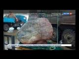 Рыбаки поймали ГИГАНТСКУЮ РЫБУ ЛУНА весом 1100 килограмм(1 тонна 100 килограмм)