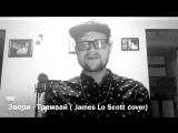 Звери - Трамвай ( James Lo Scott cover)