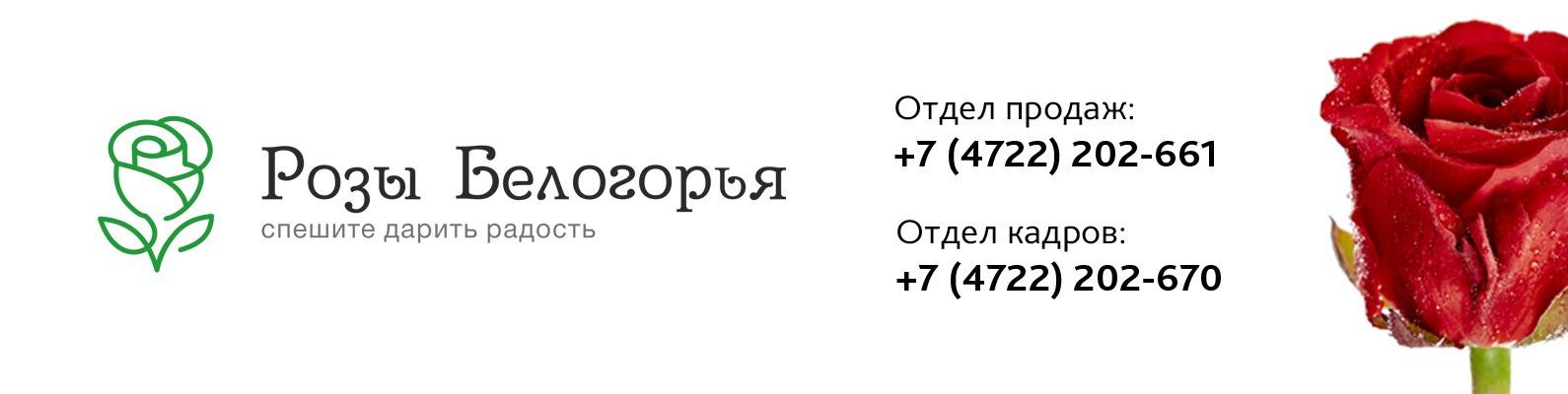 схп теплицы белогорья официальный сайт