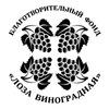"""Благотворительный фонд """"Лоза Виноградная"""""""