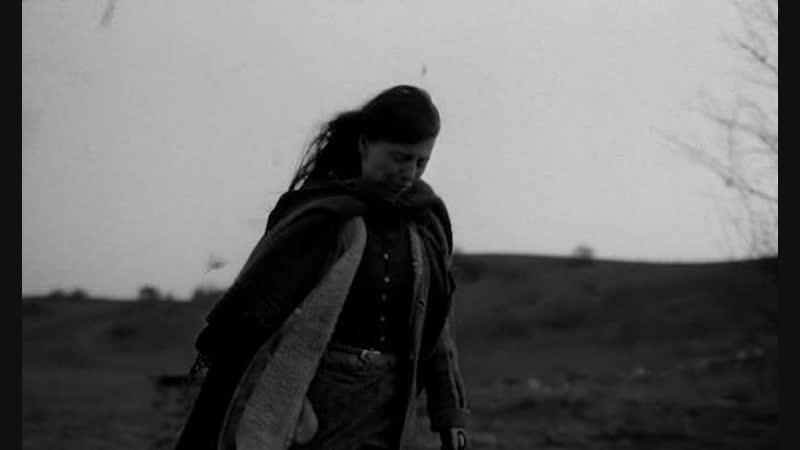 Туринская лошадь реж Бела Тарр Агнеш Храницки 2011