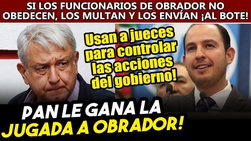 PAN le gana la jugada a Obrador si no regresan apoyos a estancias funcionarios van al bote