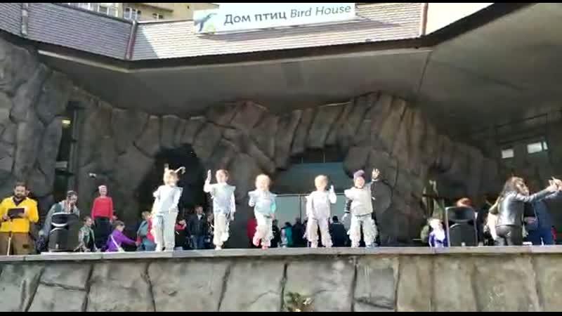 Наши Маленькие звёзды в Московском зоопарке