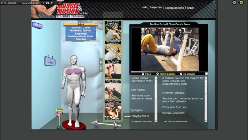 Большая грудная мышца Грудь Анатомия Упражнения Растягивание