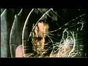 CinemADRENALINA 1 - Le Migliori Scene di Film d'Azione ( secondo il mio modesto punto di vista )