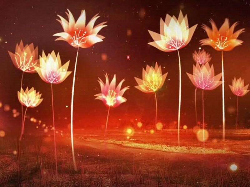 деньги гиф картинки цветы танцуют через час можно
