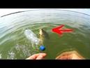 Рыбалка на карпа ВОТ ЭТО СНАСТЬ РЕАЛЬНО ЛОВИТ КАРПА
